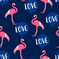 Summer pattern with cute flamingo and text cloud on dark background. Ornament for textile and wrapping. Vector