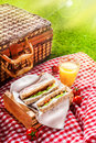 Summer picnic sandwiches fresh cherry tomatoes and a glass of refreshing orange juice on a red and white checked cloth with a Royalty Free Stock Photos