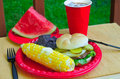 Summer picnic setting Royalty Free Stock Photography