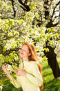 Summer - red hair woman under blossom tree Royalty Free Stock Image