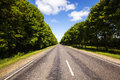 Summer road the asphalted to summertime of year along the trees grow Royalty Free Stock Images