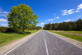 Summer road the asphalted to summertime of year along the trees grow Royalty Free Stock Photography