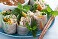 Summer rolls with soba noodles and vegetables Royalty Free Stock Photo