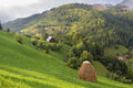 Summer rural landscape in the carpathian mountains above village moeciu bran romania Stock Photography