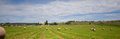 Summer rural landscape with a field and haystacks Royalty Free Stock Photo