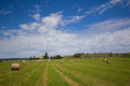 Summer rural landscape with a field and haystacks Royalty Free Stock Photography