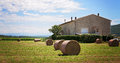 Summer rural landscape with a field and haystacks Royalty Free Stock Image