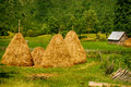 Summer rural landscape with haystacks Royalty Free Stock Photo