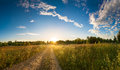 Summer rural landscape with sunrise fog and the road sky panorama Royalty Free Stock Photo