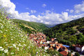 Summer rural landscape with the village and and colorful flowers krushevo shar mountain kosovo Stock Image