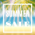 Summer sale background with palm and sun.