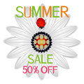 Summer sale banner with abstract daisy a red ladybug on a on a white background.