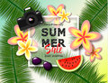 Summer sale banner. Exotic tropical background with place for text, palm leaves, watermelon, sunglasses, camera and tropical flowe Royalty Free Stock Photo