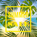 Summer sale banner with palms and sun. Royalty Free Stock Photo