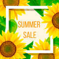 Summer sale banner template with sunflower, illustration Royalty Free Stock Photo