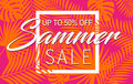 Summer sale banner with tropical exotic palm leaves and plant orange and pink bright vivid color background Royalty Free Stock Photo