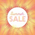 Summer sale design layout for banner, advertisement, Background with trendy stripes, coconut palm leaves. Royalty Free Stock Photo