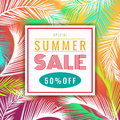 Summer sale discount banner  - colorful coconut palm leaf abstract vector illustration design Royalty Free Stock Photo