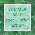 The summer sale poster in a frame on the background of fresh tropic green leaves poster. Modern Exotic banner, poster
