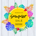 Summer sale poster of fruits and palm leaf vector online shopping banner Royalty Free Stock Photo