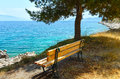 Summer sea coast landscape greece with bench under pine tree Stock Photography