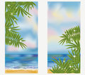 Summer sea tropical banners, vector