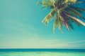 Summer sea view retro vintage style with coconut tree at perhentian island malaysia Royalty Free Stock Photography