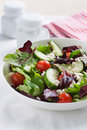 Summer season salad with salad leaves, tomatoes, cucumbers, Italian herbs and cheese Royalty Free Stock Photo