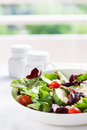 Summer season salad with salad leaves, tomatoes, cucumbers, Italian herbs and cheese in a bowl on a table Royalty Free Stock Photo