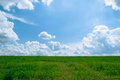 Summer shining meadow with blue sky and fluffy clouds feel of real sunlight bright white green Royalty Free Stock Images