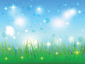 Summer sky and meadow with grass Stock Image