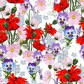 Summer spring wild pink, violet flowers, red poppy and blue forget-me-not flowers.