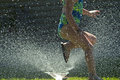 Summer sprinkler fun in a water Stock Images