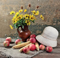 Summer still-life. Royalty Free Stock Photography