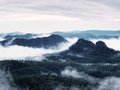 Summer sunrise forest after heavy rain. Beautiful mountain within inversion. Royalty Free Stock Photo