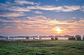 Summer sunrise over pastoral Royalty Free Stock Photo