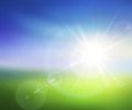 Summer sunrise vector image of blurred background with and lens flares Stock Photography