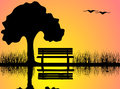 Summer sunset scene tree bench reflecting lake Stock Photo
