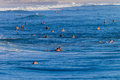 Summer Surfing Crowds Royalty Free Stock Image