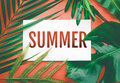 Summer text with tropical leaves in pastel color background.