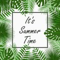 Summer Time card design with - tropical palm leaves, jungle leaf , exotic plants and border frame. Graphic for poster, banner.