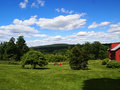 Summer time landscape picture of the backyard in sunny day Royalty Free Stock Photography