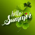 It is Summer Time Lettering Background With green Clover. Royalty Free Stock Photo