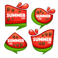 Summer time, vector collection of sweet and shine watermelon