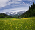 Summer in Tirol Royalty Free Stock Photography