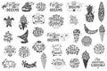 https---www.dreamstime.com-stock-illustration-lettering-summer-chamomile-herb-dandelion-vector-calligraphy-lettering-lettering-summer-chamomile-herb-dandelion-vector-image96036947