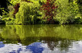 Summer trees reflected in the river thames at goring willow and copper beech england Royalty Free Stock Photography