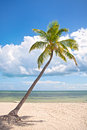 Summer at a tropical beach paradise in Florida Royalty Free Stock Photo