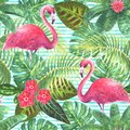 Summer tropical exotic background