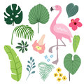 Summer tropical graphic elements with flamingo bird. Jungle floral illustrations, palm and monstera leaves and hibiscus